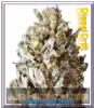 Heavyweight Diesel Drift Fem 5 Marijuana Seeds